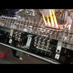 Chinesische Ampulle, die füllende Dichtungsmaschine bildet