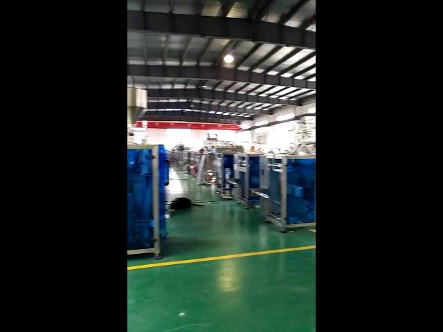 Fließverpackungsmaschine für Kandiszucker für USA-Markt