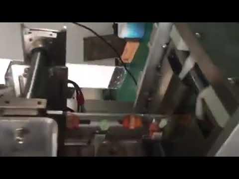 Plastiktüte Sachet Flüssigkeit Füllung Dichtungsverpackungsmaschine für Milchgetränk Sojasauce Essig